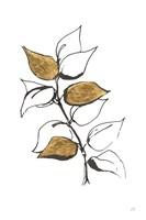 Leafed VIII Fine Art Print