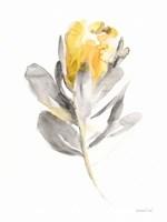 Spirit Flower I Framed Print