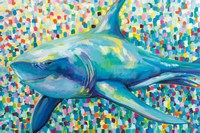 Chatham Shark Fine Art Print