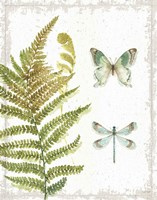 My Greenhouse Botanical III No Words Framed Print