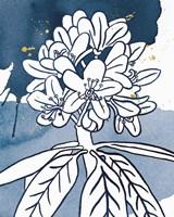 Indigo Blooms II Framed Print