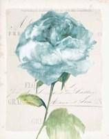 Antique Floral II Blue Vintage Framed Print