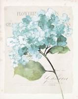 Antique Floral I Blue Vintage Framed Print