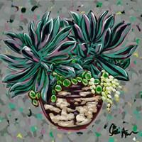 Succulent Pot I Fine Art Print