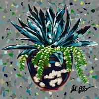 Succulent Pot II Fine Art Print