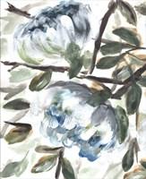 Farmhouse Blue Bush I Fine Art Print