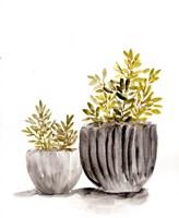 Gray Potted Plants Fine Art Print