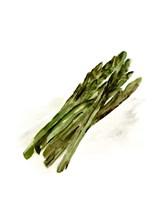 Veggie Sketch plain I-Asparagus Framed Print
