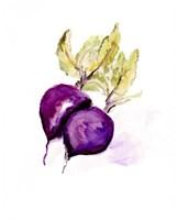 Veggie Sketch plain III-Beets Framed Print