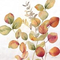 Eucalyptus Leaves Spice I Fine Art Print