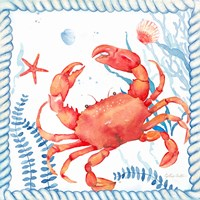 Nautical Sea Life I-Crab Framed Print