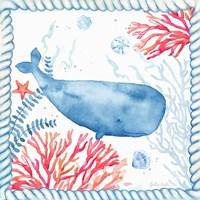 Nautical Sea Life II-Whale Framed Print