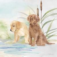 Woodland Dogs II Framed Print