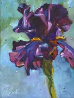 Iris in Bloom Fine Art Print