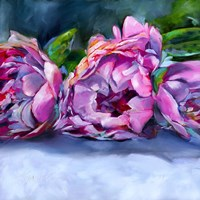 Roses lying down Fine Art Print