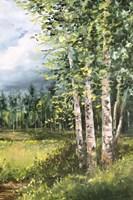 Colorado Meadow panel II Fine Art Print