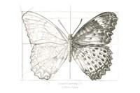 Butterfly Sketch landscape II Fine Art Print