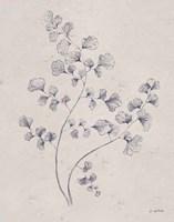 Soft Summer Sketches IV Navy Fine Art Print