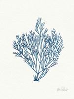 Sea Garden II Royal Blue Framed Print