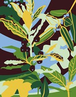 Bay Leaf Fine Art Print