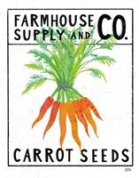 Kitchen Garden Seed Packet IV Framed Print