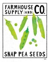 Kitchen Garden Seed Packet II Framed Print
