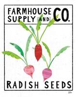 Kitchen Garden Seed Packet I Framed Print