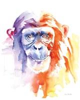 Chimpanzee II Fine Art Print