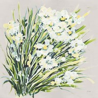 Spring Gray Fine Art Print