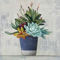 Succulent Still Life I Navy Fine Art Print