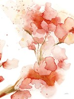 Blossoms II Fine Art Print