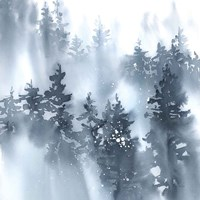 Misty Forest I Fine Art Print