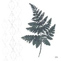 Nordic Fern II Framed Print
