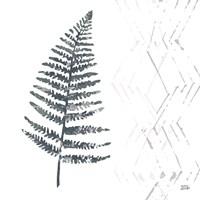 Nordic Fern I Framed Print