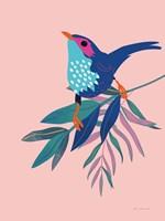 Exotic Birds IV Framed Print