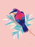 Exotic Birds II Framed Print