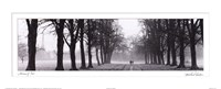 Avenue of Trees BW Fine Art Print
