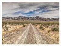 Nevada Road Fine Art Print