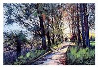 Passage Fine Art Print