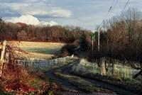 Lane Along Wooden Fence In Autumn Fine Art Print