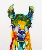 Llama-rama Fine Art Print