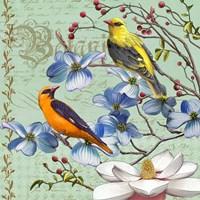 Oriole Bird Botanical Framed Print