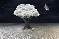 Moon Tree Fine Art Print