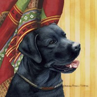 Black Labrador Retriever Fine Art Print