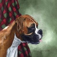 Boxer Fine Art Print