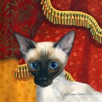 Siamese Fine Art Print
