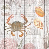 Crabs on Driftwood Panel Framed Print