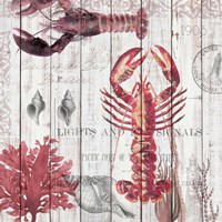 Lobsters on Driftwood Panel Fine Art Print
