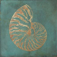 Nautilus Shell Gold on Turquois Framed Print