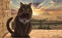 Egyptian Cat Fine Art Print